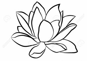 300x210 Simple Way To Draw A Lotus Flower