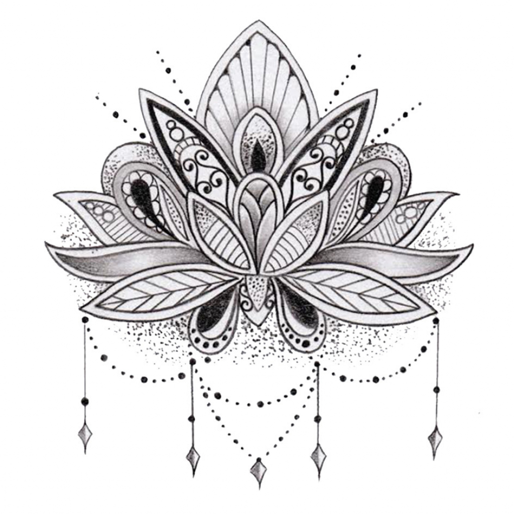 1024x1024 Drawings Of Lotus Flowers Pictures