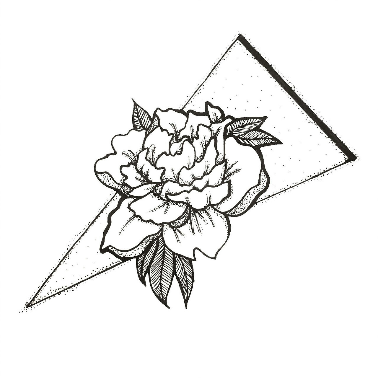 1280x1280 Carnation Line Drawing Step