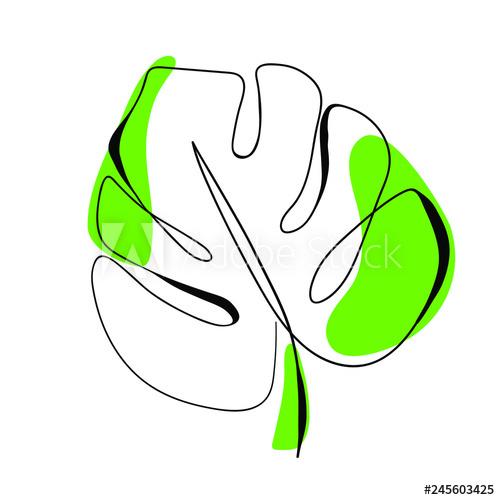 500x500 One Line Drawing Vector Monstera Leaf Modern Single Line Art