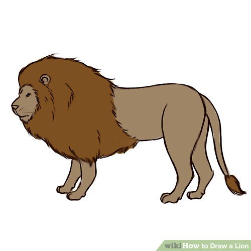 Lion Body Drawing Free Download Best Lion Body Drawing On