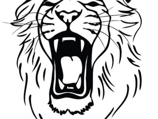 640x480 Drawing Clipart Lion