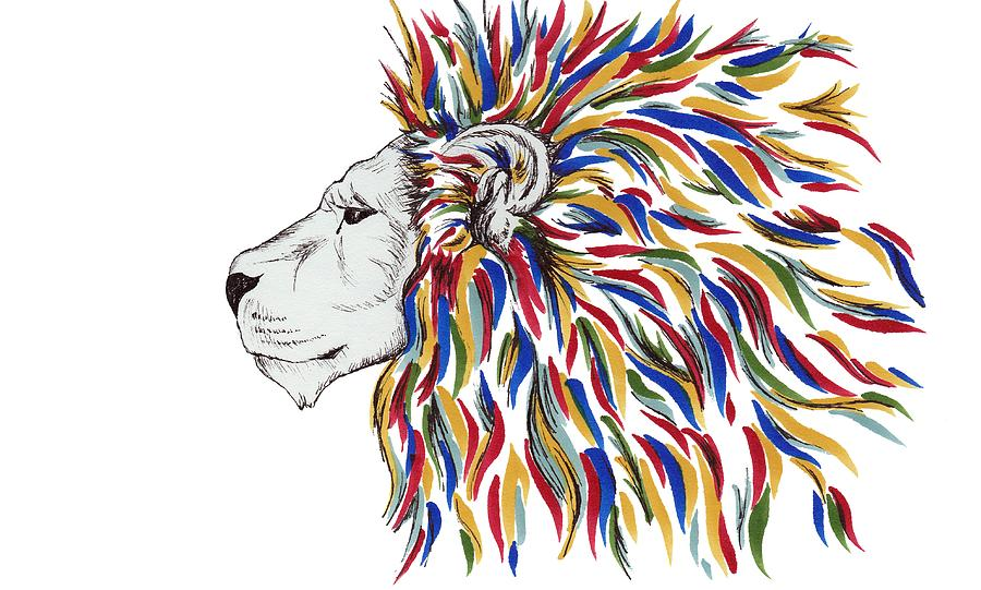 900x541 Mane Of Color Drawing