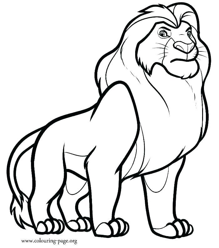 700x791 Printable Lion Coloring Pages Lion Color