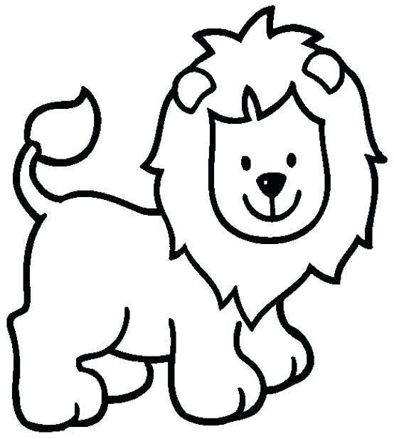554x617 Lion Color