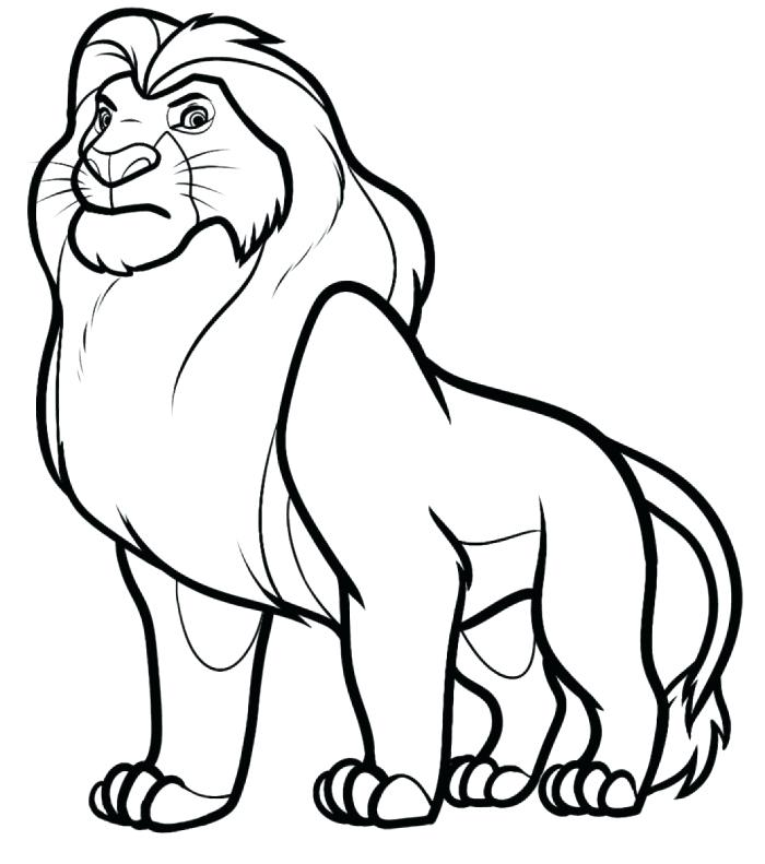700x791 Lion Drawing For Kids
