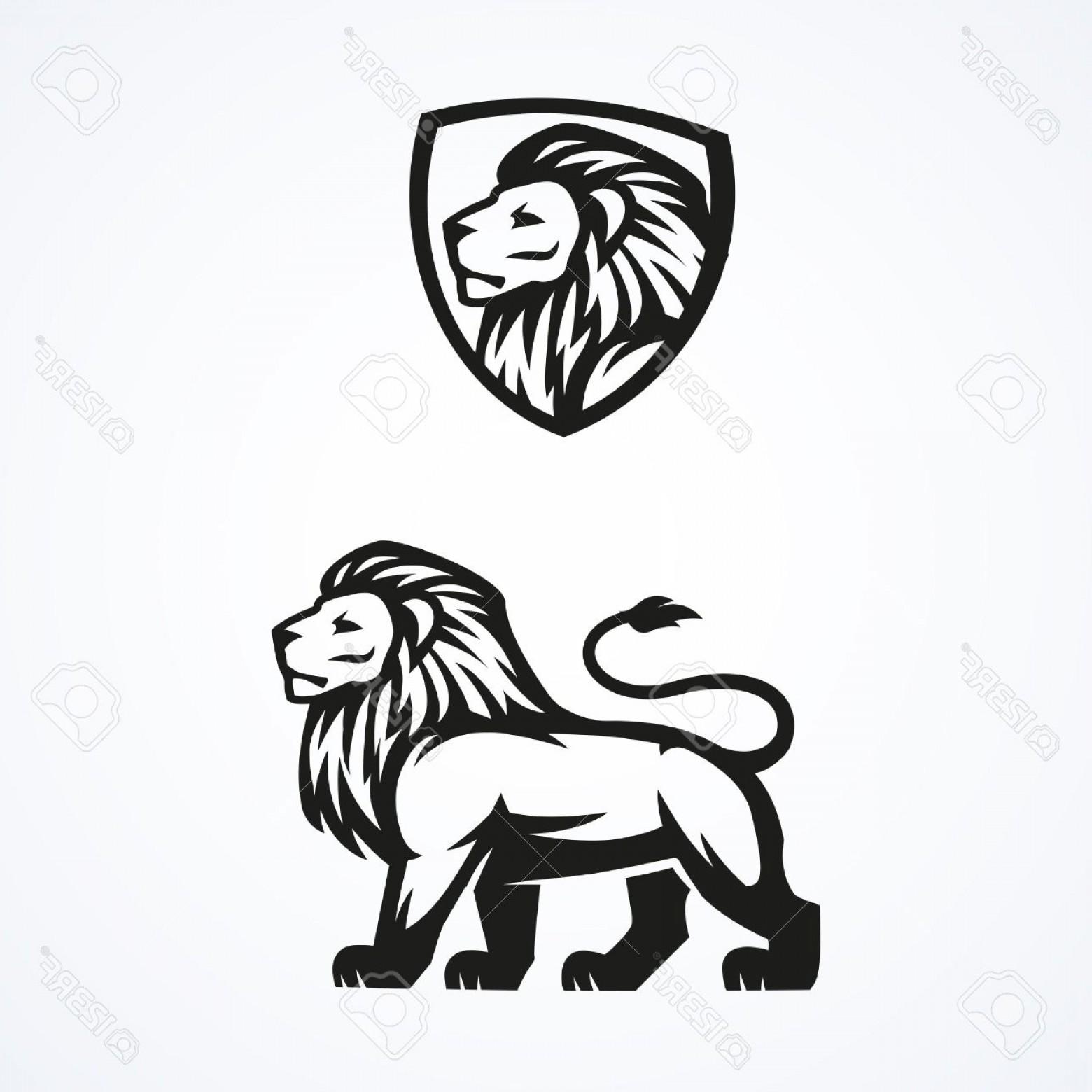 1560x1560 Photostock Vector Lion Logo Sport Mascot Emblem Vector Design