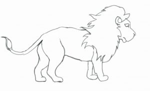 300x182 Endorsed Pictures Of Lions To Draw How A Lion King Nala Hellokids Com