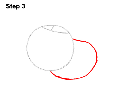 500x386 How To Draw Pumbaa Form The Lion King