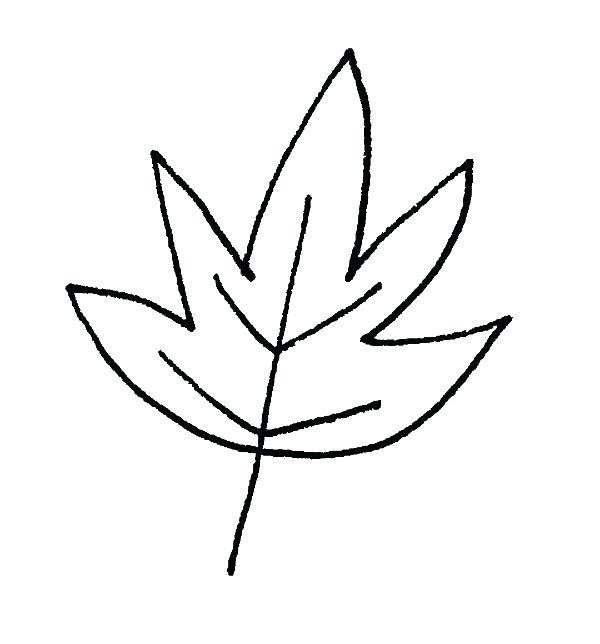 600x644 how to draw a fall leaf drawing a leaf easy draw fall leaf