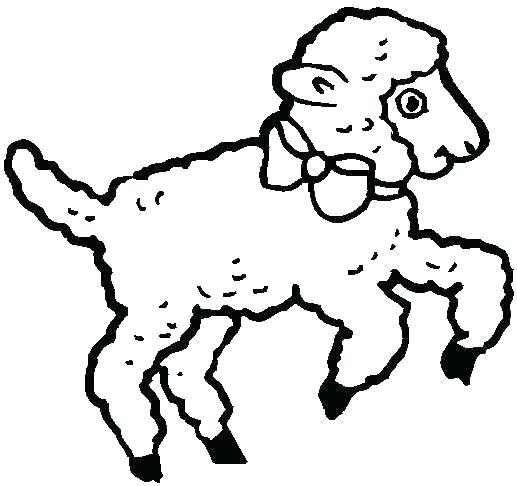 517x486 lion and lamb coloring pages lion and lamb coloring pages lamb