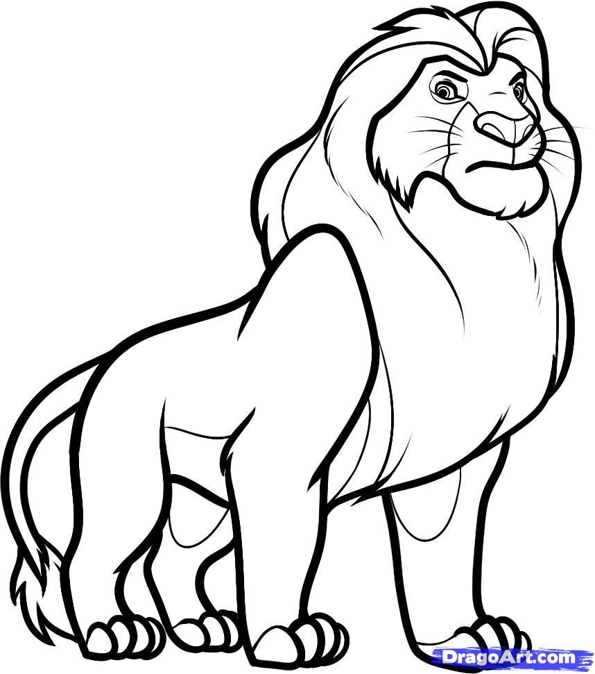 Lion Lying Down Drawing