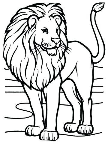 360x480 Male Lion Coloring