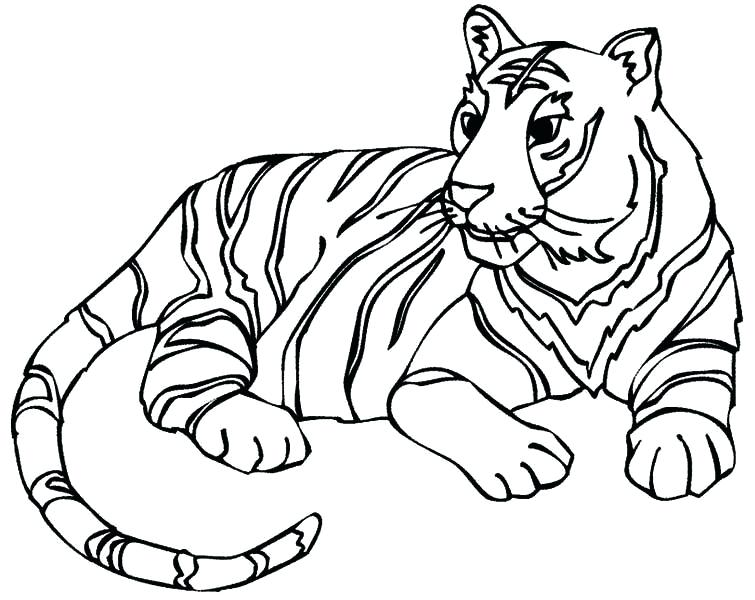 755x600 Pictures Of Tigers To Color Coloring Pages Tiger