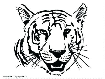 440x330 Tiger Coloring Pages Printable Cute Kids And For Free Lion Pa