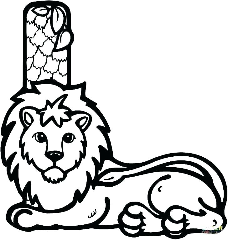 728x769 Realistic Lion Coloring Pages