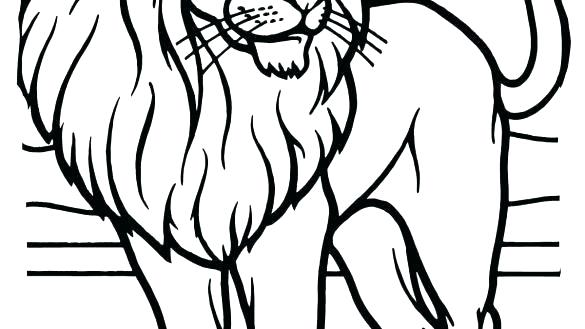 585x329 Coloring Pages Lions