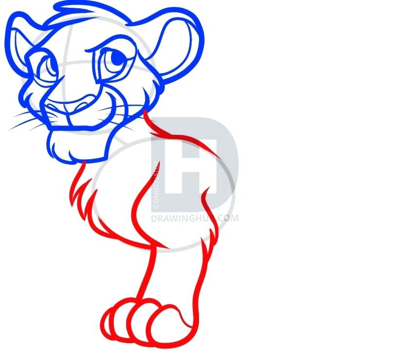 812x720 dragoart lion how to draw a realistic lion step mountain lion