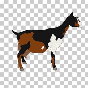 310x310 nigerian dwarf goat pygmy goat cattle drawing caprinae, dwarf png