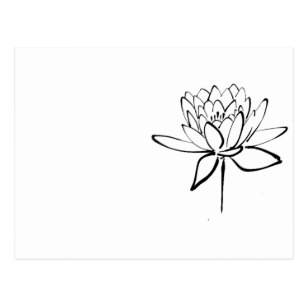 307x307 Lotus Flower Drawing Gifts On Zazzle