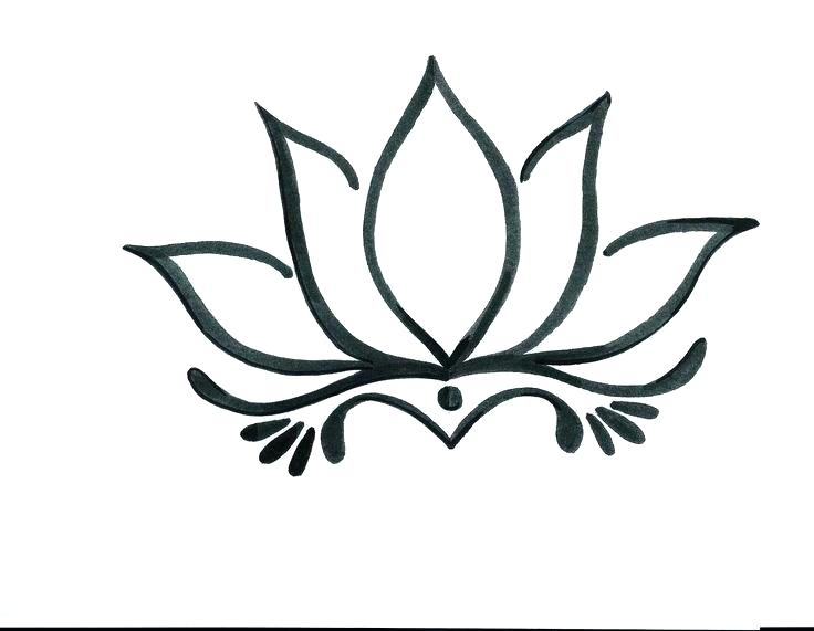 736x571 Drawing Of A Lotus