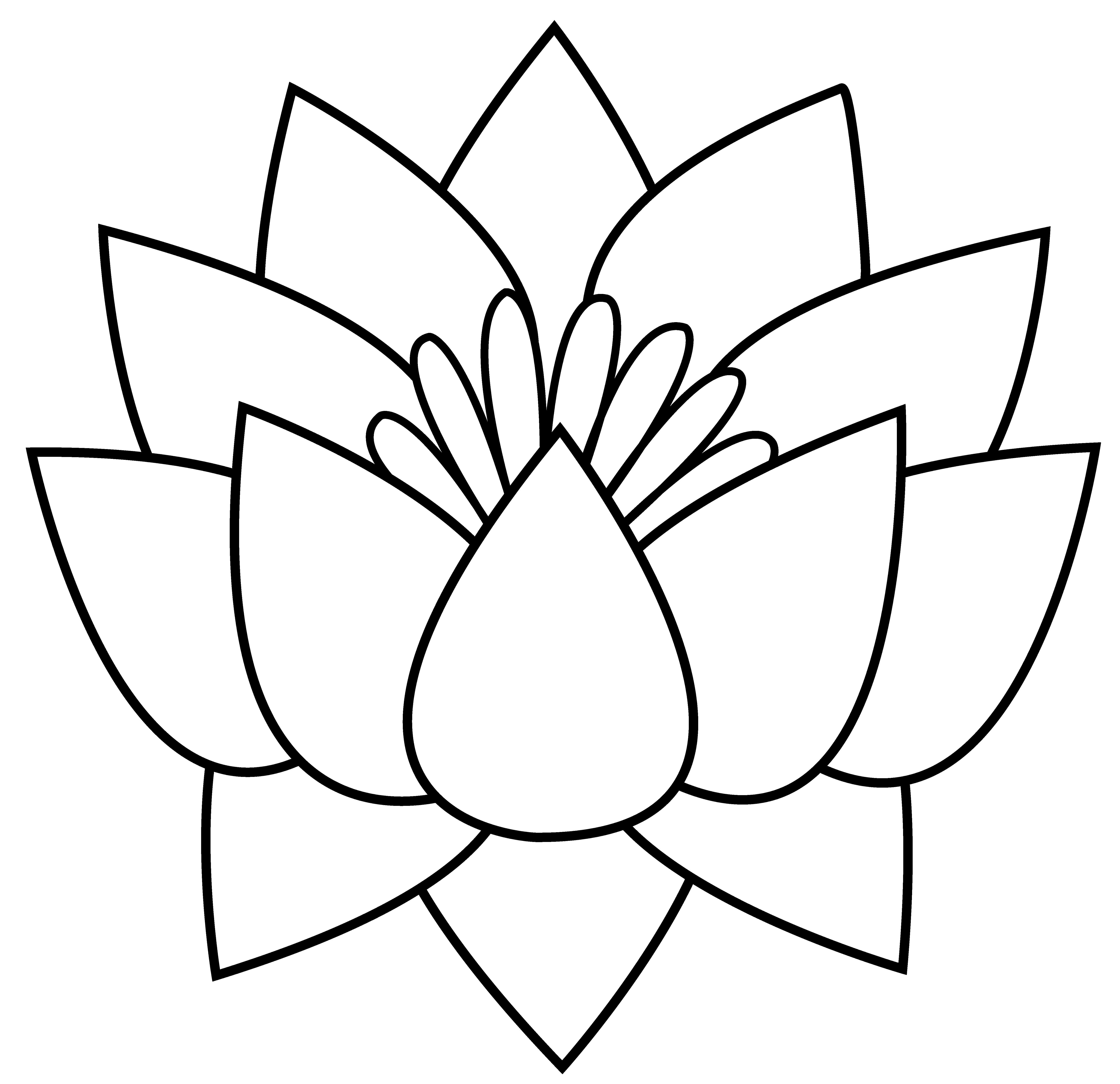 5953x5764 Lotus Flower Simple Drawings