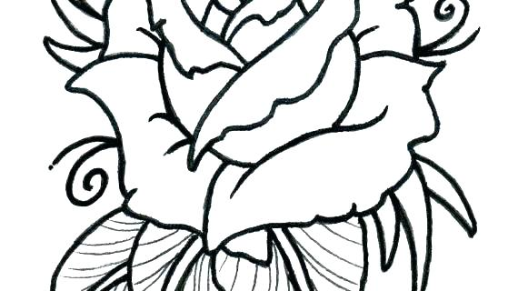 570x320 Rose Outline Drawing Google Search Flowers Easy Flower To Draw