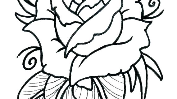 570x320 Flower To Draw Easy Download