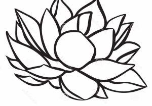 300x210 simple lotus drawing drawing of lotus flower for kids simple lotus