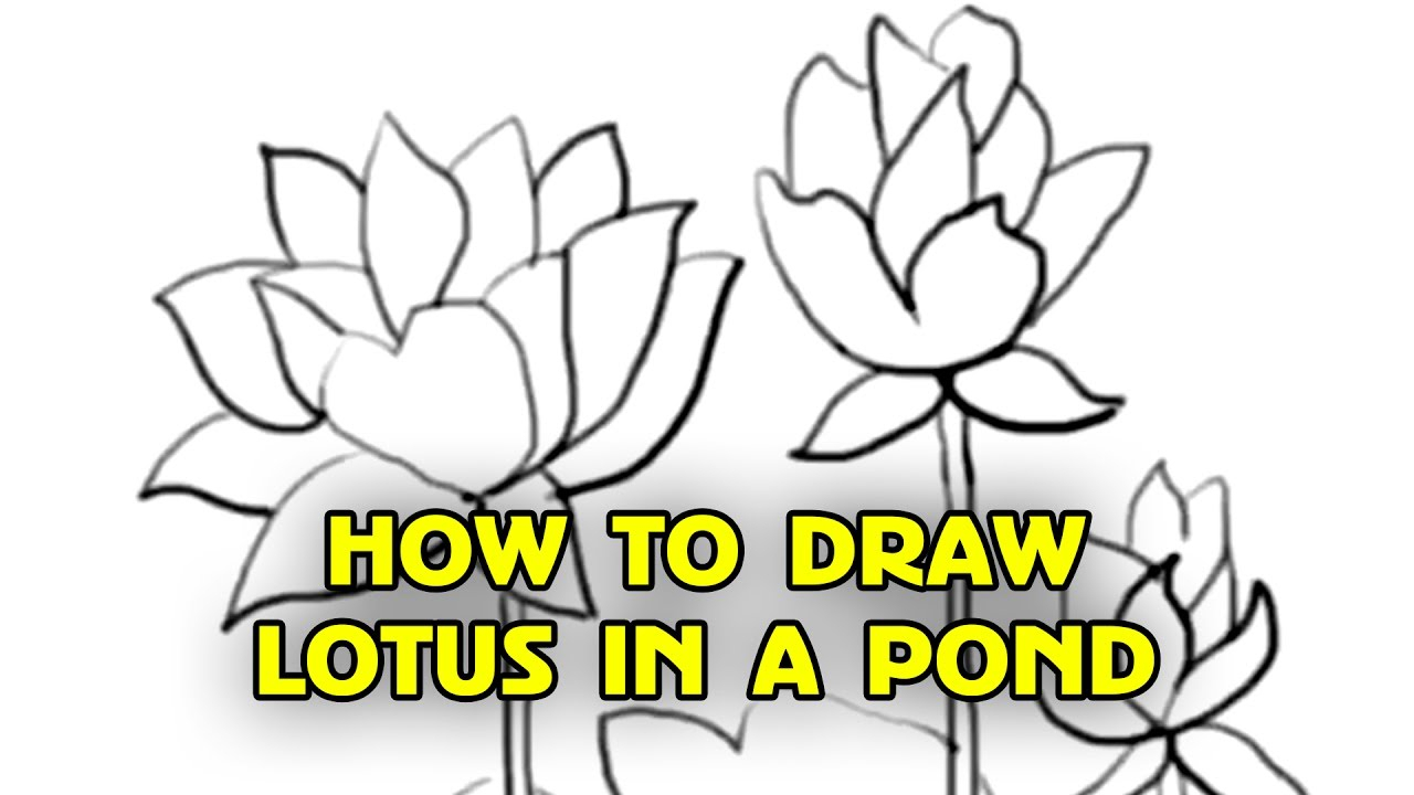 1280x720 Draw A Lotus Flower For Kids How To Draw Lotus Stepstep