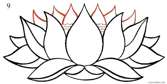 550x277 Drawing Of A Lotus Author Drawing Lotus Temple Drawing Images