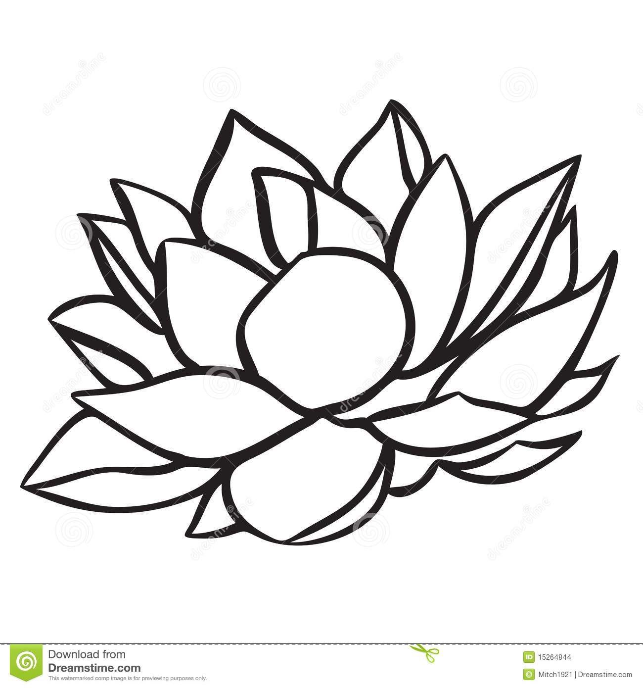 1300x1390 Lotus Drawing Black And White
