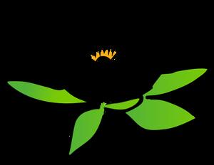 300x232 Lotus Flower Outline Clip Art Free