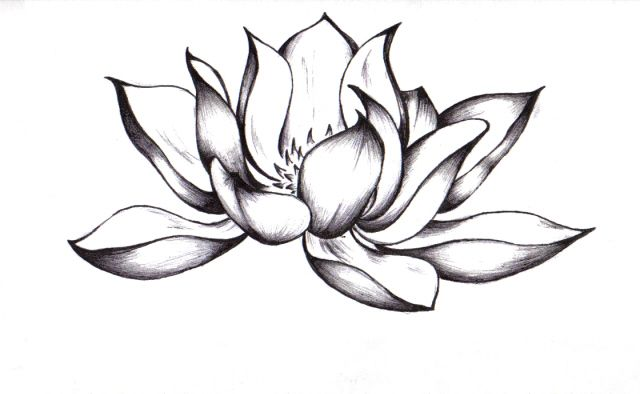 640x394 Black And White Lotus Flower Tattoo I Would Add Blue For Color