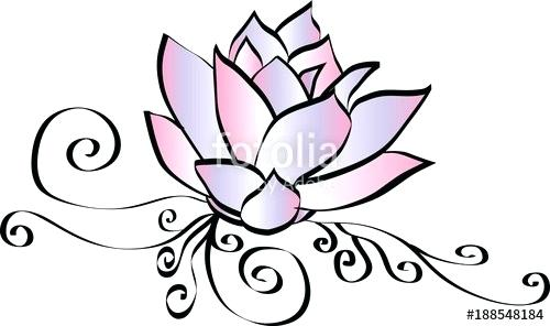500x296 lotus flower drawing flower drawing lotus lotus flower drawing