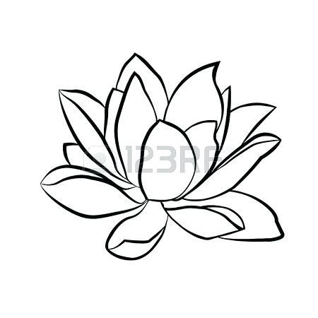 450x450 Lotus Flower Sketch Made Recently Lotus Flower Drawings Easy