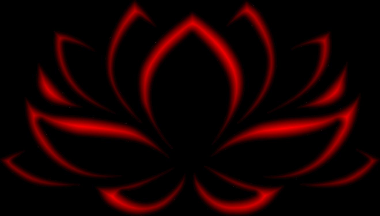 1319x750 Nelumbo Nucifera Flower Nymphaea Lotus Drawing Black And White Cc0