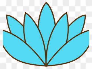 320x240 Sacred Lotus Drawing Flower Nymphaea White
