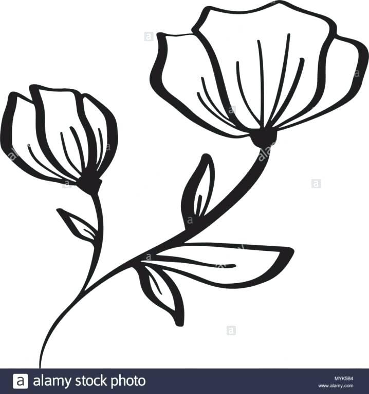 718x768 flowers drawing simple good looking flowers flowers drawing simple