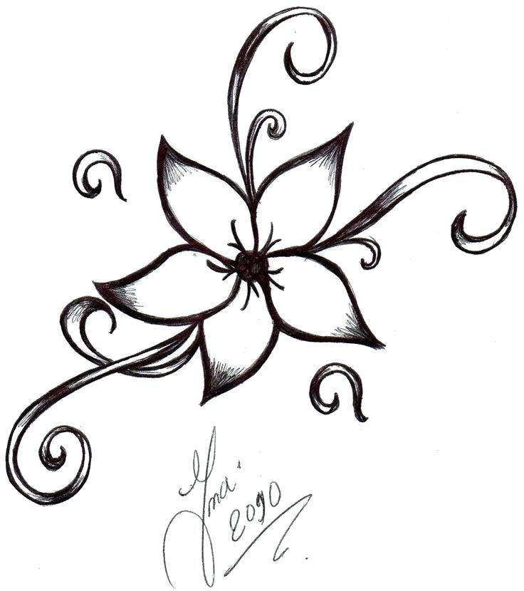 736x830 drawings flowers flowers drawings flowers tumblr