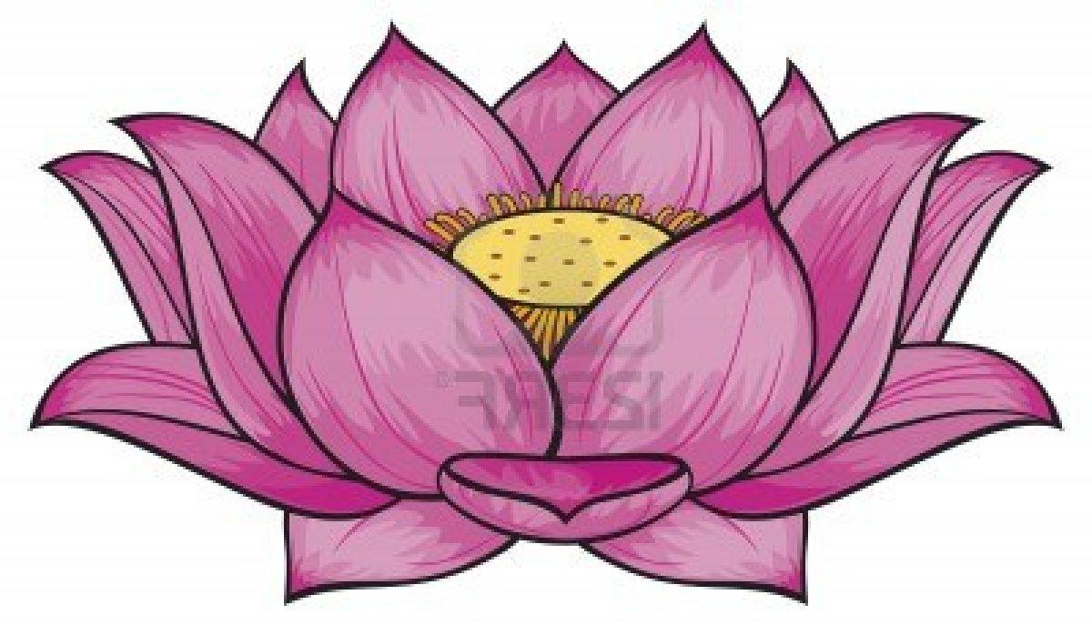 Lotus Flower In Water Drawing