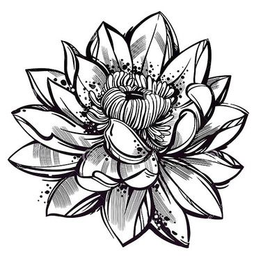 375x375 sketch style lotus flower tattoo design men's style lotus