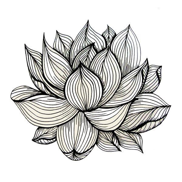 600x600 Lotus Flower, Black And White, Nature, Organic Design, Drawing