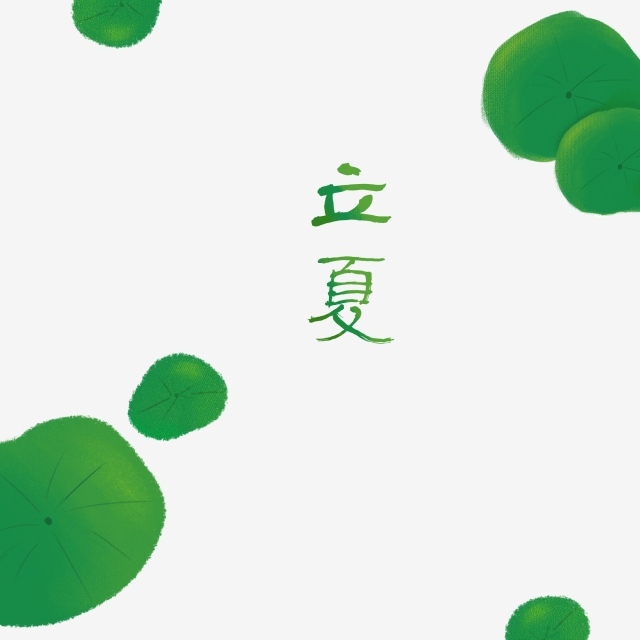 640x640 Beginning Of Summer Twenty Four Solar Terms Chinese Style Lotus