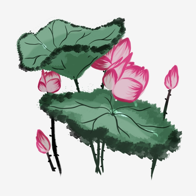 640x640 Color Gu Yu Qingming Cartoon, Hand Painted, Lotus, Lotus Leaf Png
