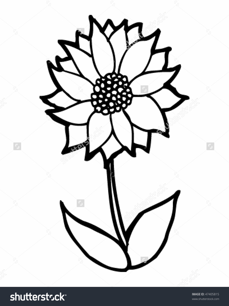 768x1024 cartoon flower drawings lotus flower line drawing lotus flower