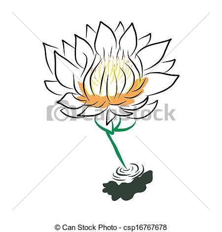 450x470 Hand Drawing Water Lily, Lotus, Flower Vector Vectors
