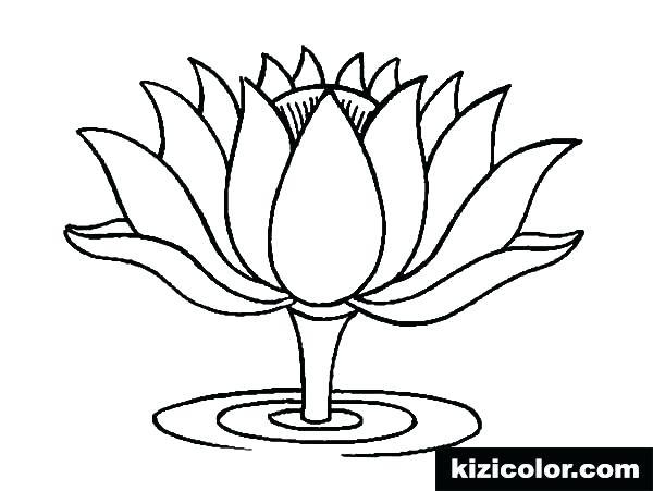 600x451 Lotus Flower Coloring