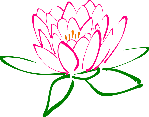 600x472 Pink Drawing Lotus Flower Transparent Png Clipart Free Download