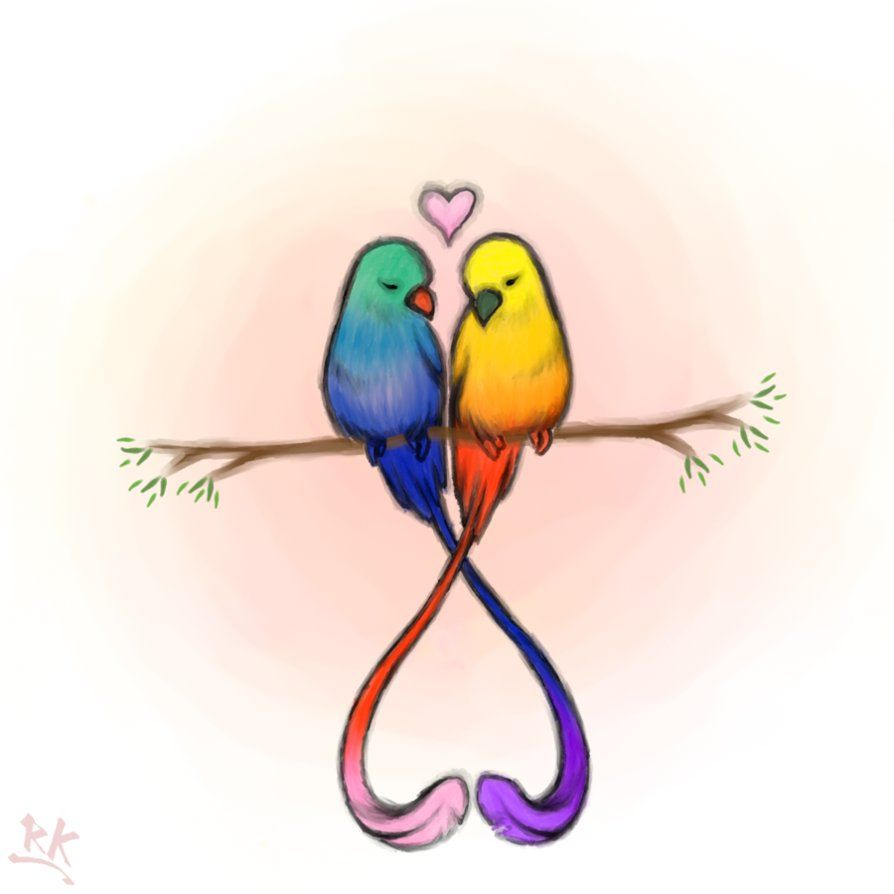894x894 Love Birds! Inspirations In Cute Drawings Of Love